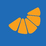 Blue Tangerine logo slice