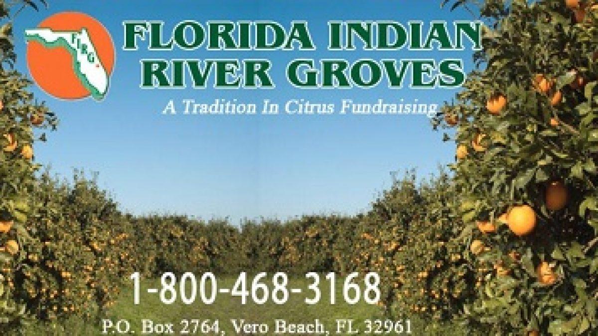 Florida-Indian-River-Groves
